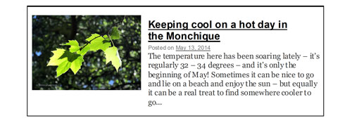 Keeping cool in the Monchique Algarve Blog