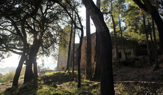 Monchique Convent exterior through trees