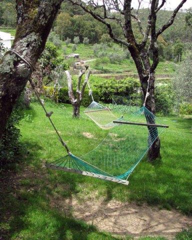 hammocks in the garden
