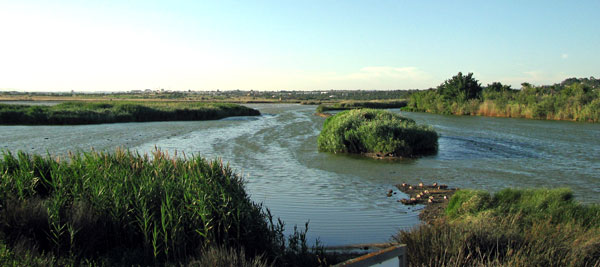 Salgados lagoon