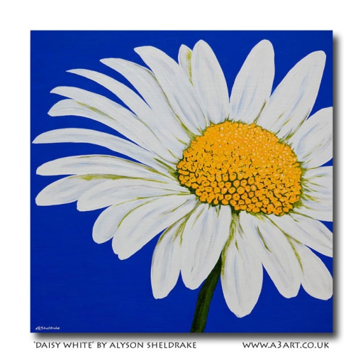 A3 Art Daisy White by Alyson Sheldrake