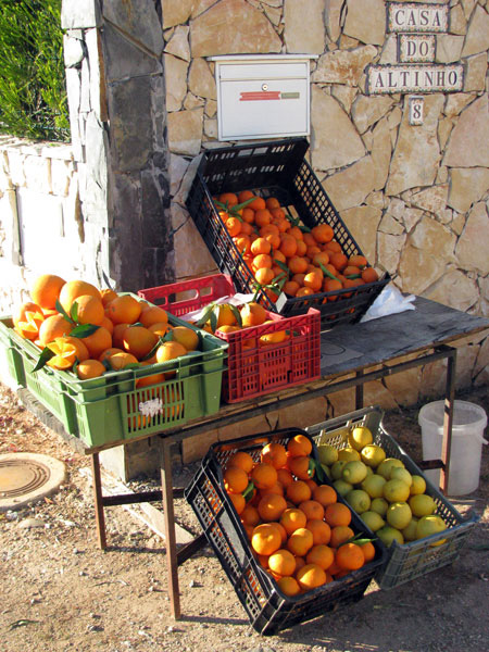 Oranges Algarve Blog #004