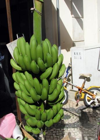 Loulé market #0027