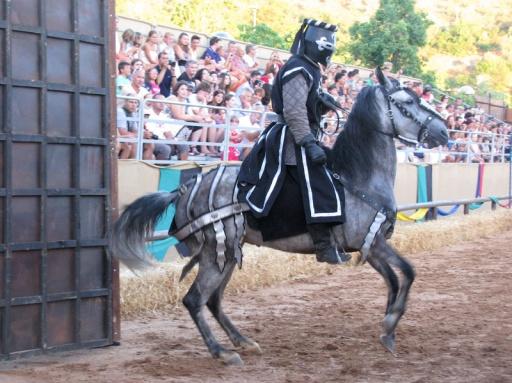 Silves Medieval Fair 2013 #013