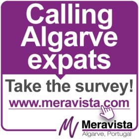 Meravista survey