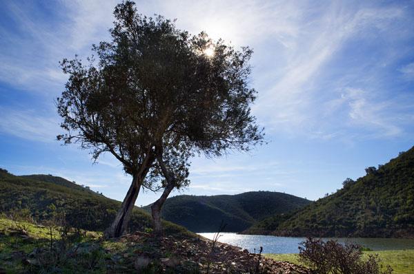 Heading into the Alentejo countryside (3/6)