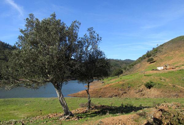 Heading into the Alentejo countryside (4/6)