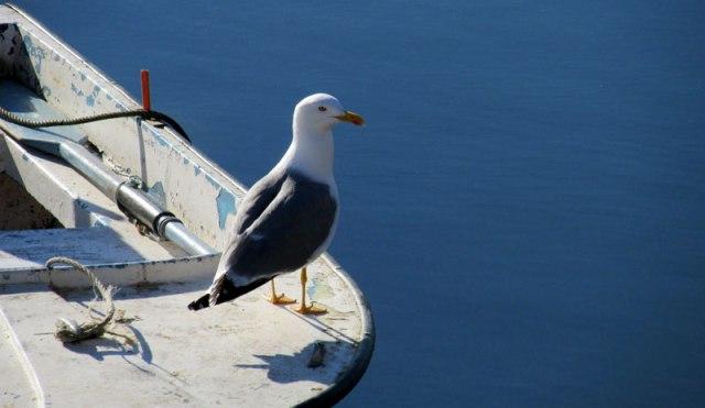 Faro Old Town Algarve Blog Dave Sheldrake Alyson Sheldrake