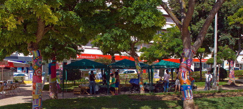 Organic Produce in the Park (2/6)