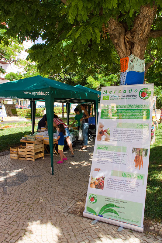 Organic Produce in the Park (3/6)
