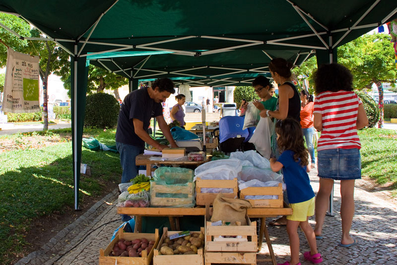 Organic Produce in the Park (4/6)