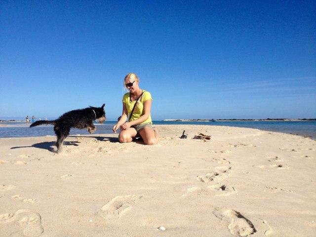 Enjoy the Algarve magazine