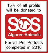 Art by Alyson Sheldrake SOS Algarve Animals Sponsorship