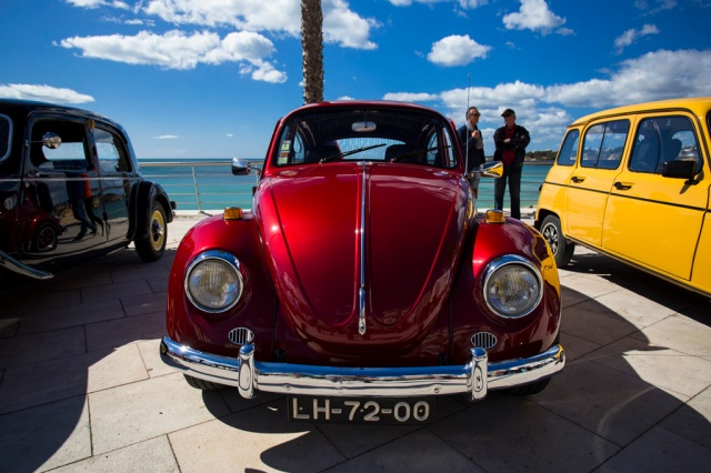 Classic-Cars-006