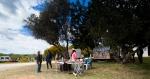 Silves Garden Fair