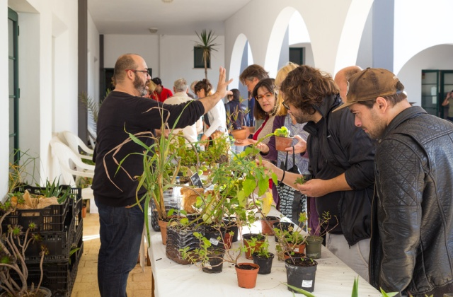 Plants and Seeds Exchange Algarve Encontro de Troca de Plantas e Sementes do Algarve