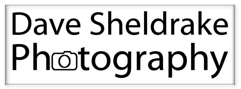 Dave Sheldrake Photography